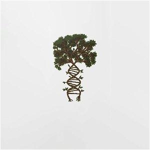 126. Vyrieši syntetická biológia problémy s klímou?