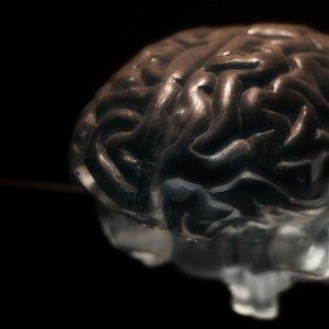 O neurovede a filozofii