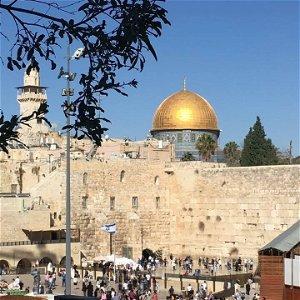 S2E7: IZRAEL - Orla si na obed nedáš
