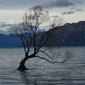 S3E1: NOVÝ ZÉLAND - Hora osudu